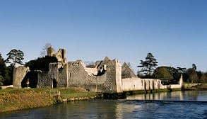 desmond_castle