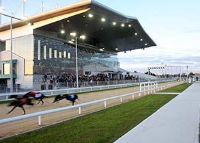 limerick-greyhound-stadium