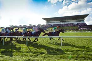 horse-racing